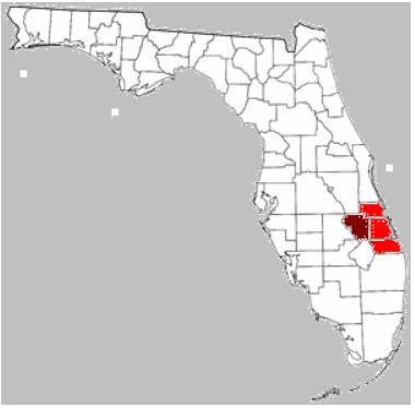 Florida_Treasure_Cost_Area